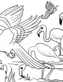 Flamingo und Papagei